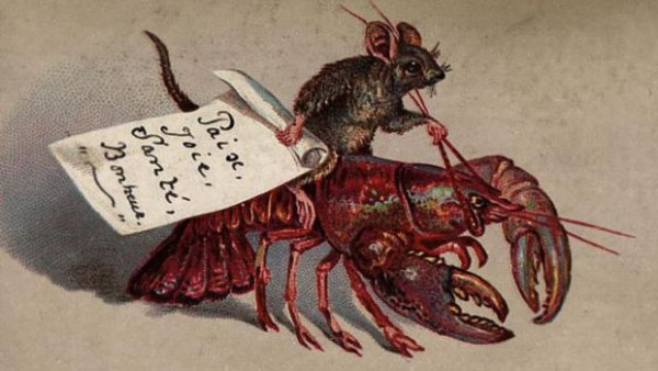 card1lobster-600x338